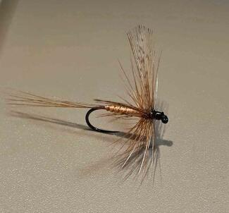 Spinner march brown